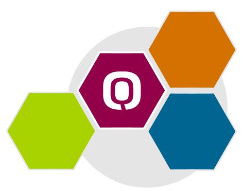 System kolejkowy Q-NSK elementy systemu